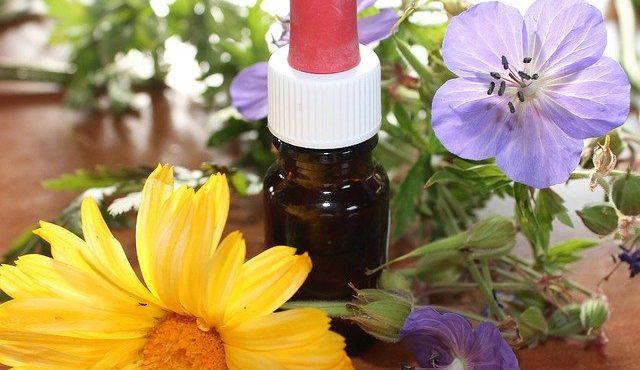 ¿Quieres aprender qué es una farmacia homeopática? Empieza aquí